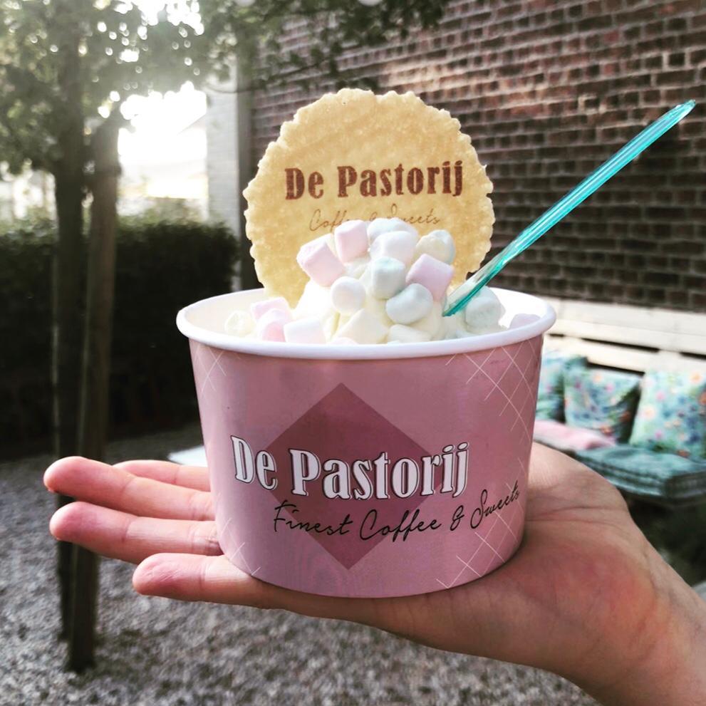 Huisgemaakt Vanille ijs in Peer